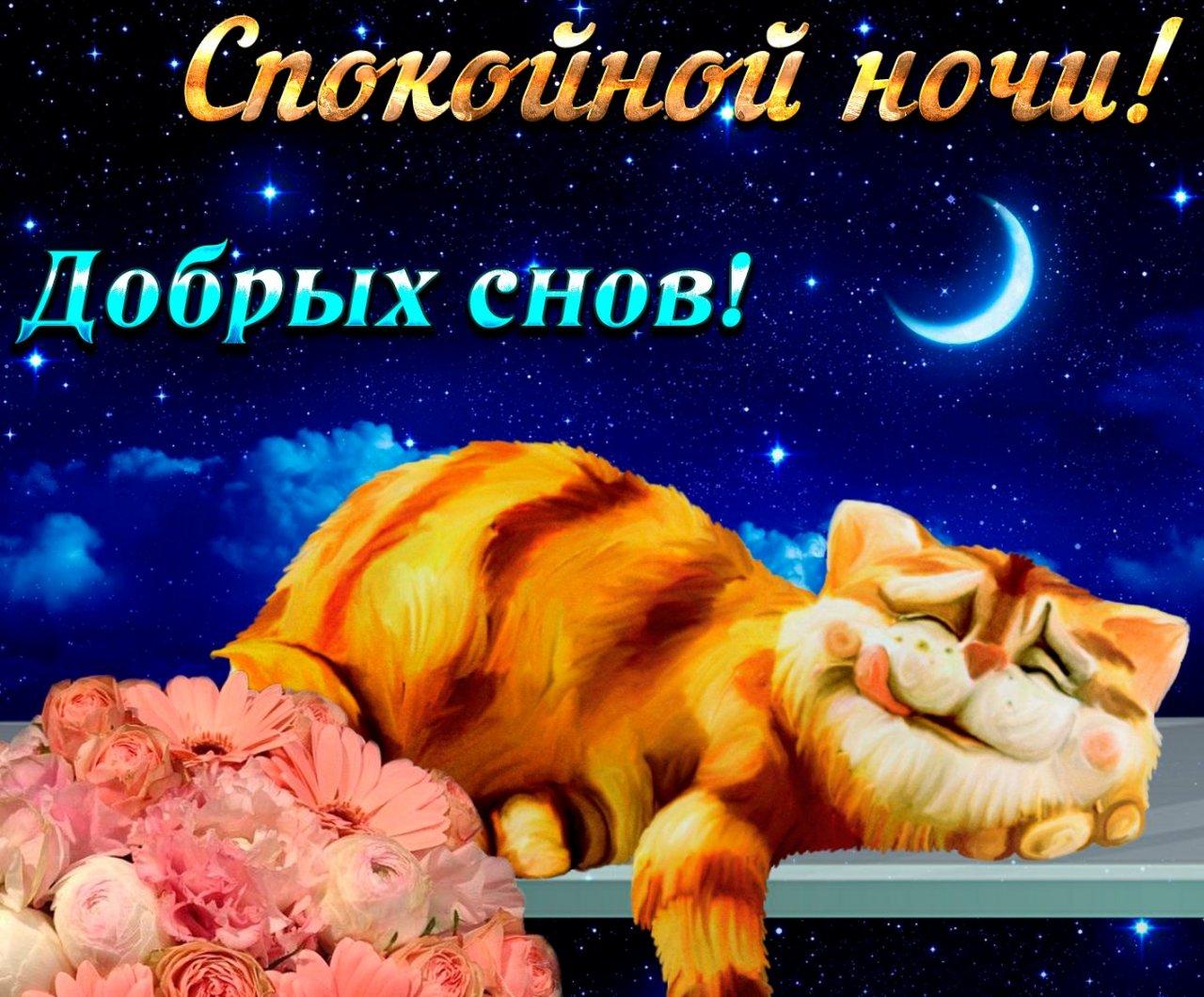 день сладкого сна открытки или направить